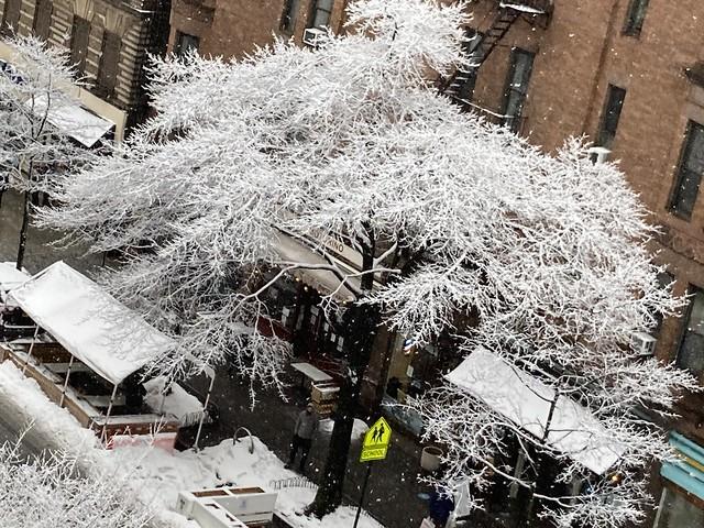 NYC snowstorm 2021-02-07