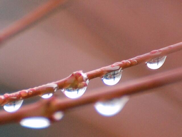 notes de pluie