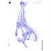 Die Gestalt Des Menchen (XLVIII) - Artist: Leon 47 ( Leon XLVII ) Sketch, Sketches, Schizzo, Schizzi