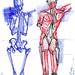 Die Gestalt Des Menchen (XLI) - Artist: Leon 47 ( Leon XLVII ) Sketch, Sketches, Schizzo, Schizzi