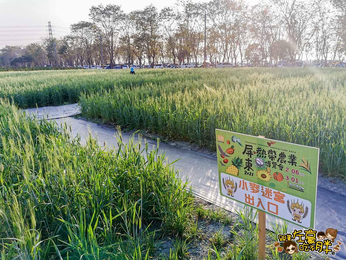 2021屏東農業博覽會-60