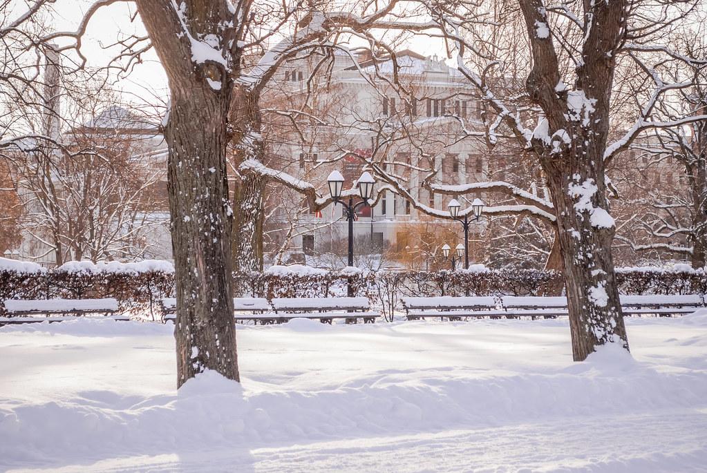 Роскошная зима! 11:44:26 DSC_0130
