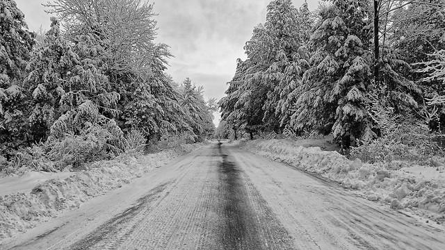 There is always hope at the end of the road / Il y a toujours de l'espoir au bout de la route (In Explore 08-02-2021)