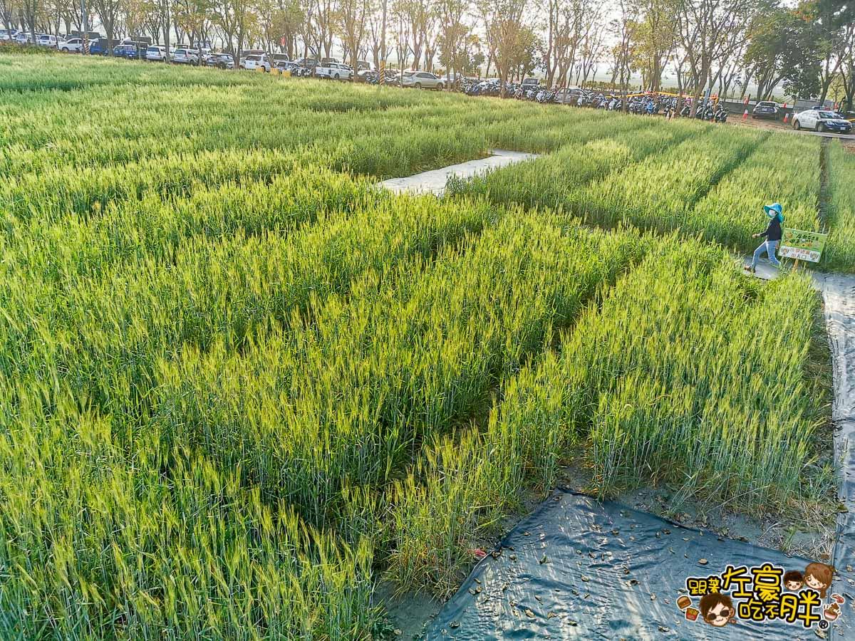 2021屏東農業博覽會-59