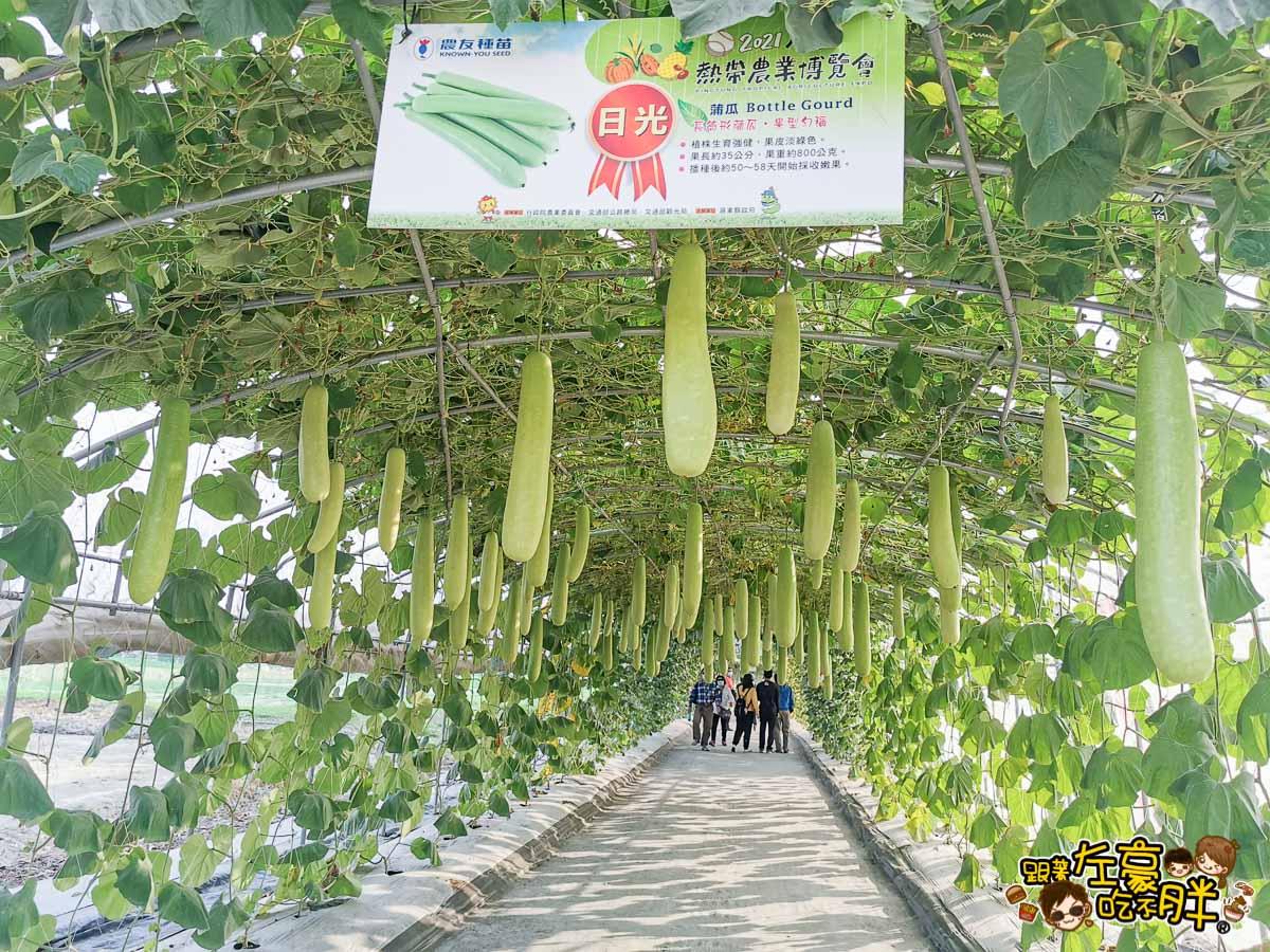 2021屏東農業博覽會-46
