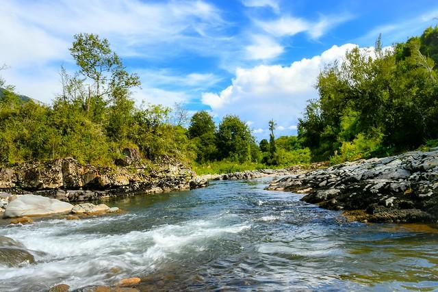 Futrono - Río Caunahue