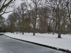 Zuiderpark in wintertime