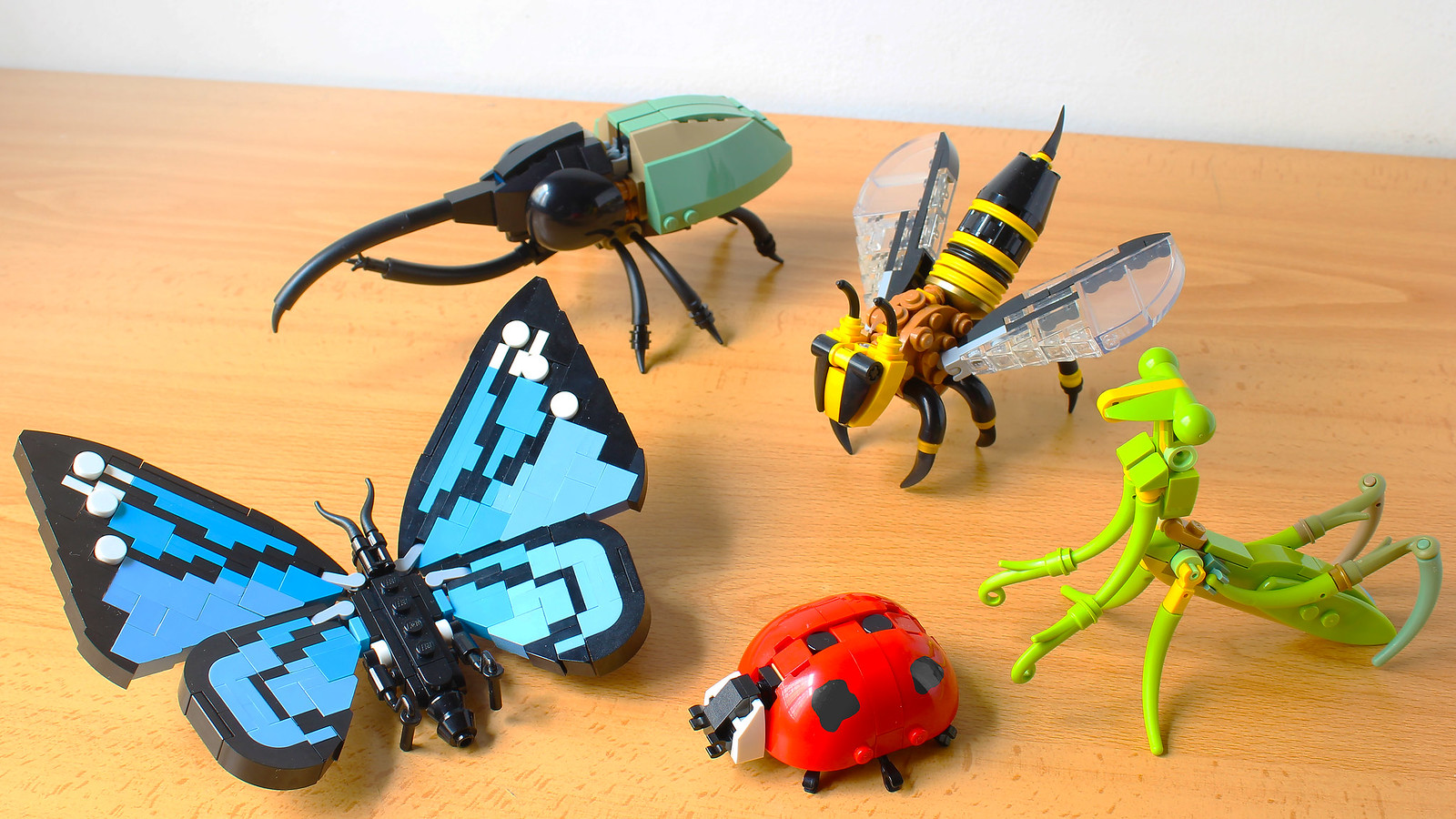 LEGO Insect Collection (new LEGO Ideas project!)