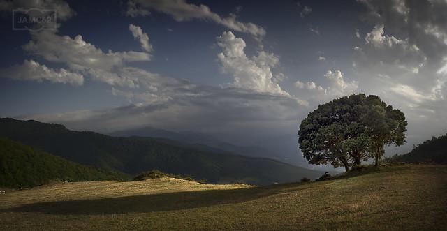 Paisaje / Landscape