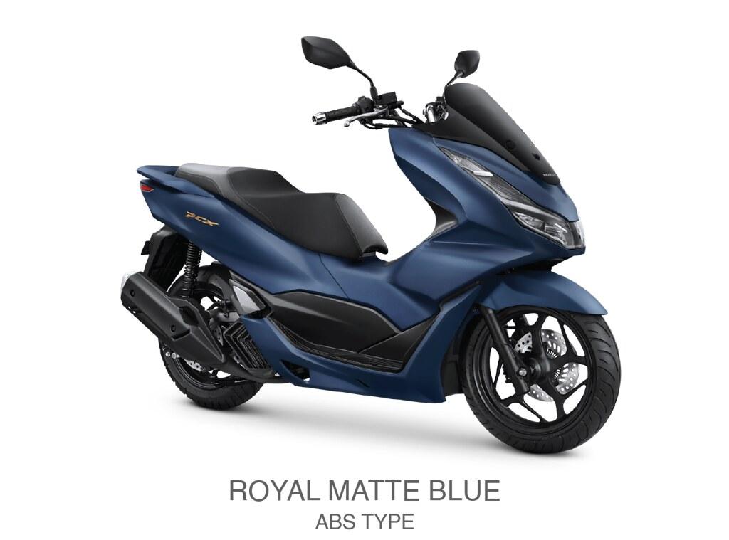 Royal Matte Blue