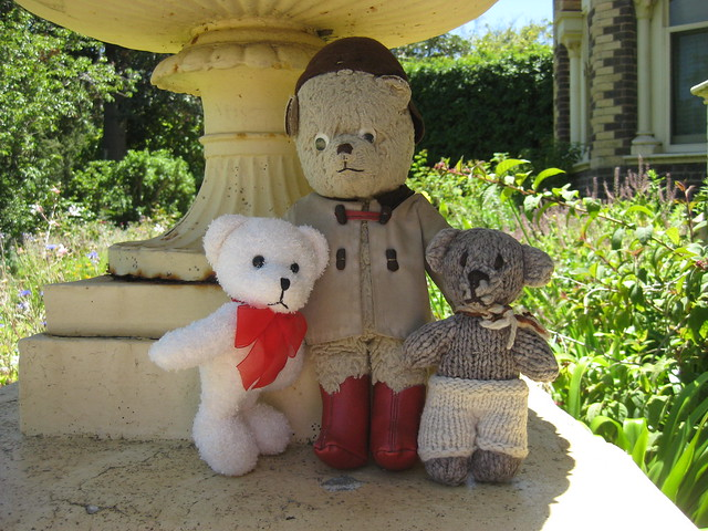 Paddington, Scout and Bogart Settle in the Shade of an Old Urn
