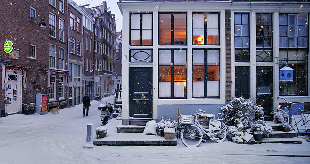 Snowflakes falling in the early morning at the Egelantiersgracht - Amsterdam