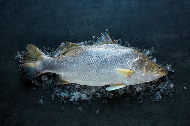 Lee Fish Whole Barramundi