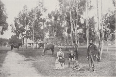 Hunt's Farm, Strout road, Willunga 1890
