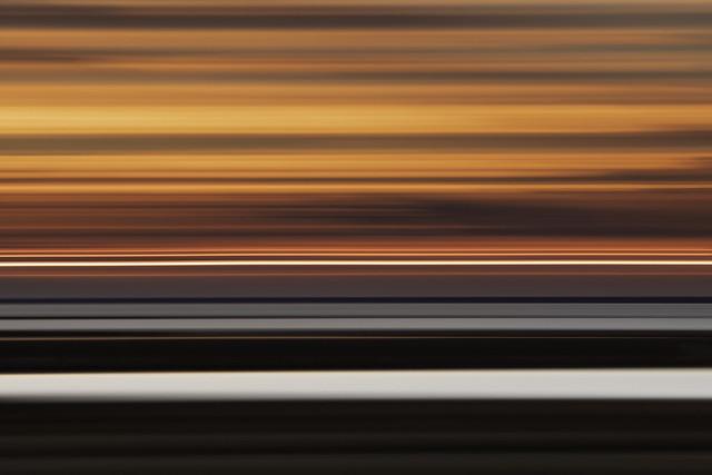 Marshland Abstract