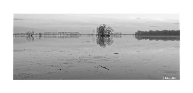 Bislicher Insel...Winterhochwasser VI