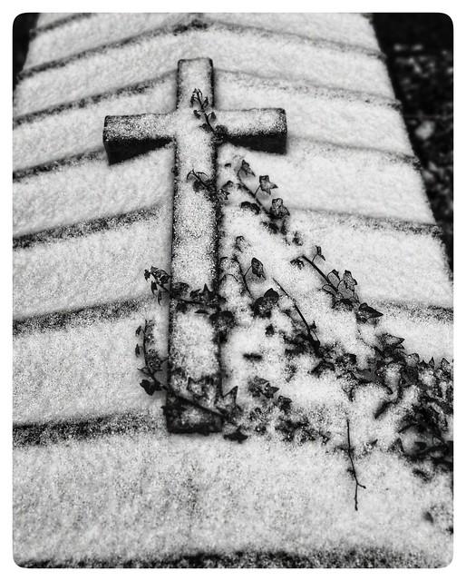 Brompton in the snow