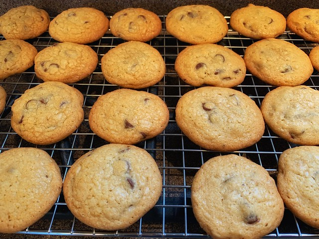 Soft and Gooey Chocolate Chip Cookies