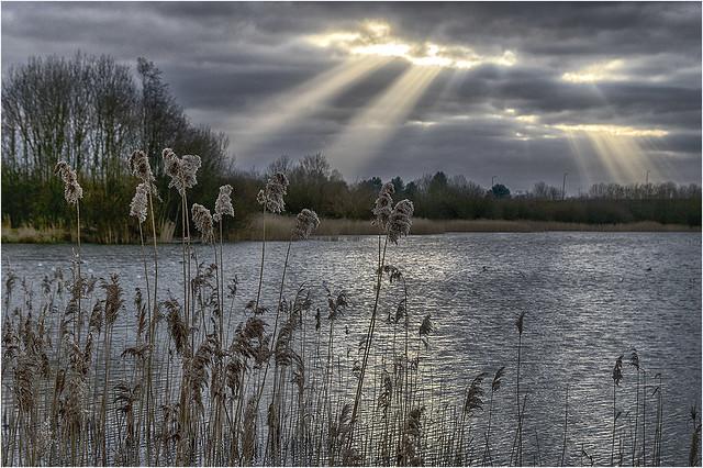 Parc Tredelerch lake