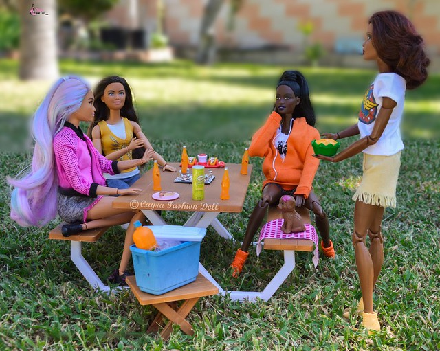 Picnic with friends and fast food