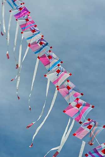 <p>... at the Otaki Kite Festival</p>