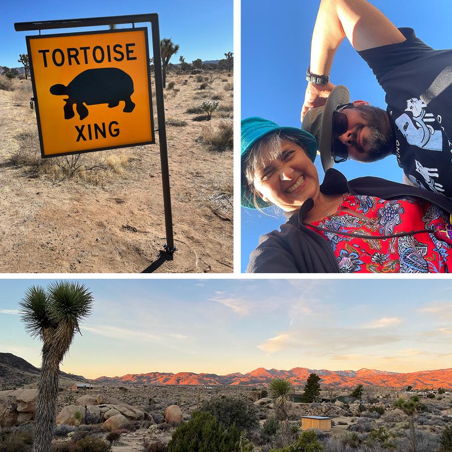 adventure-in-the-desert