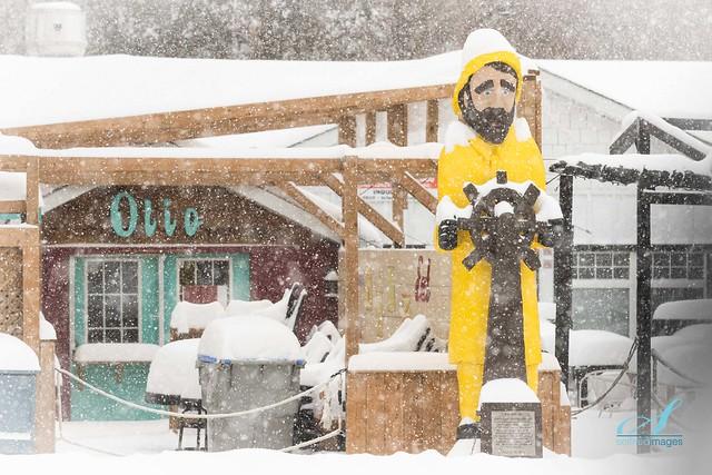 January 29th Snow Squall - Captain Harry