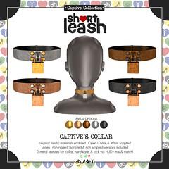 .:Short Leash:. Captive's Collar
