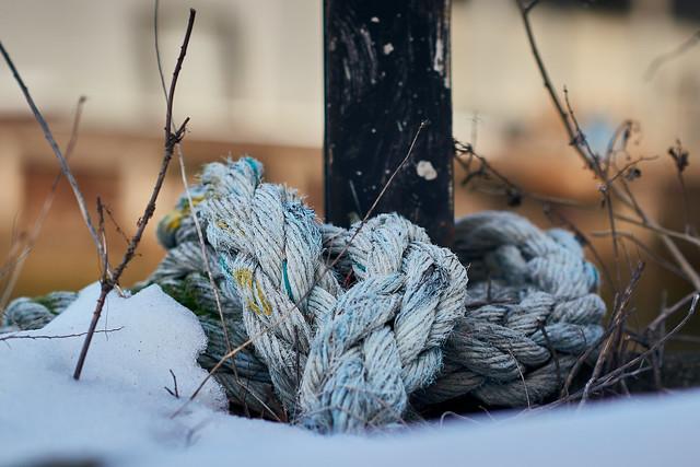 Gowanus winter
