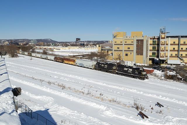 Grain in the Snow