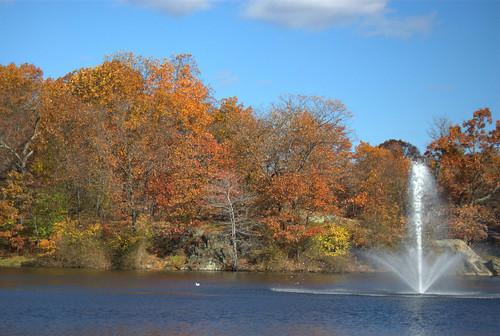 fellsmere pond fountain water lake tree foliage autumn fall landscape malden massachusetts park duck bird nature