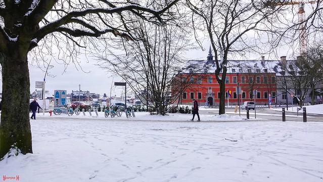 Winter Namur - 9402