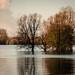 Hochwasser (2)