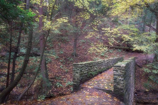 Stone Bridge, Autumn