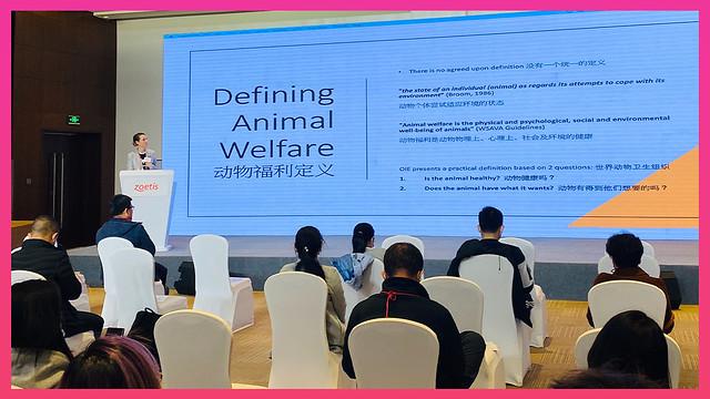 Senior Veterinary Surgeon Eddie Drayton presenting a slide about small animal welfare
