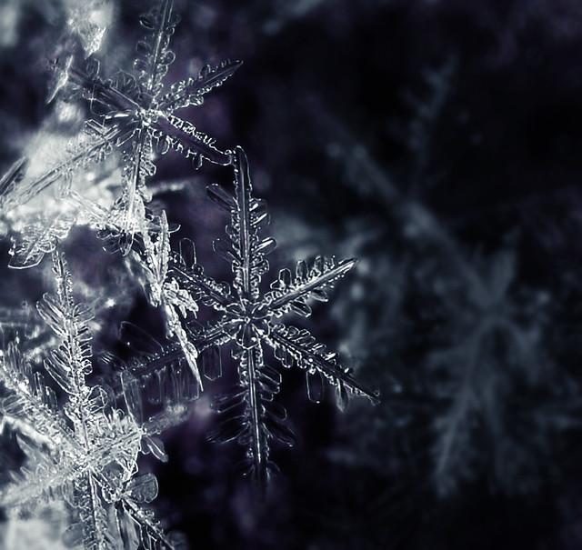 Belgique ohain flocons neige