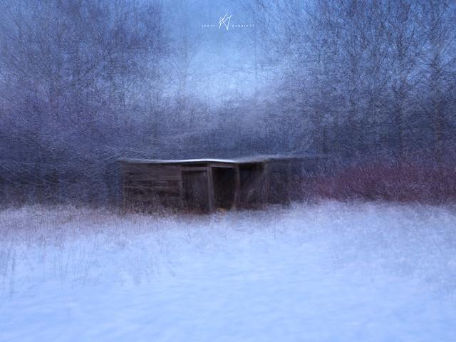 Nodeland Winter Shed - Pep Ventosa II