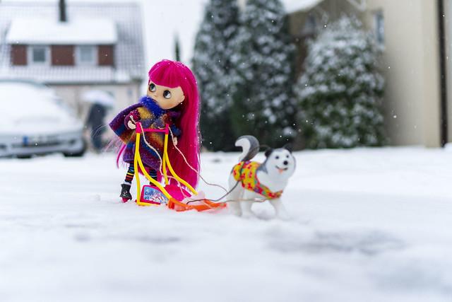 133/365 We got snow - time for dog sledging
