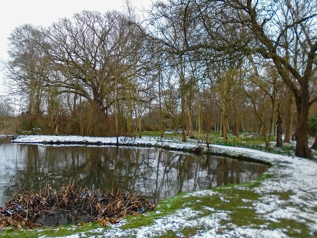 Pond and snow