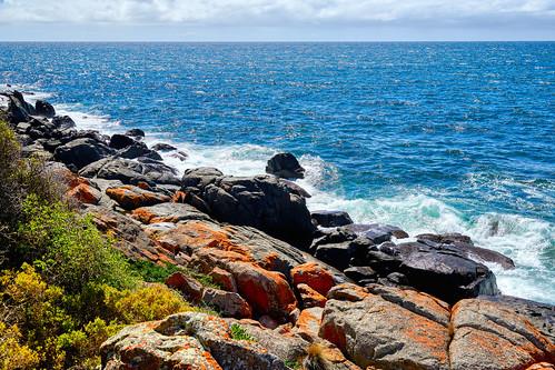 luminosity7 nikond850 launceston tasmania australia lowhead northerntasmaniancoastline ruggedcoastline orangelichen littoralzone shootingintothesun light sea seascape ocean waves