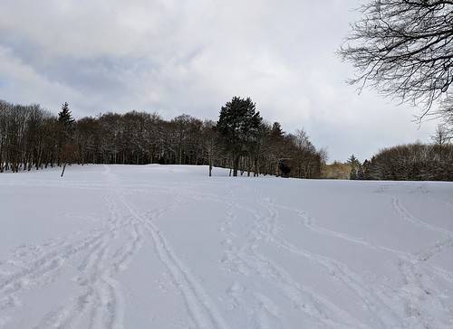 Balbirnie Snow, Fife