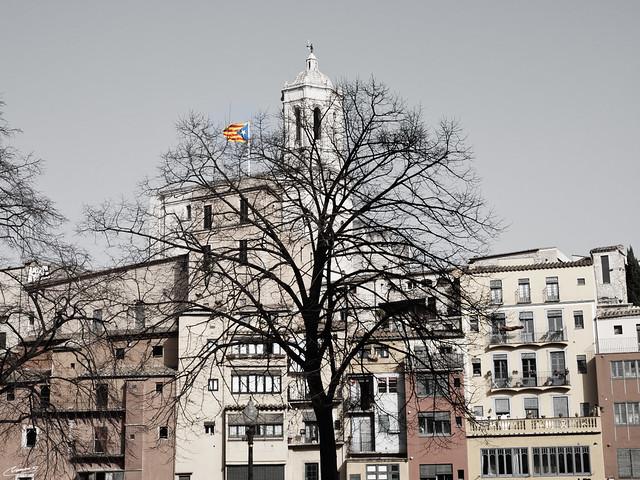 RF- Girona- Catedral rera l'arbre