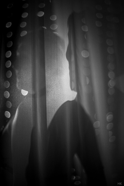 shadow on the veil