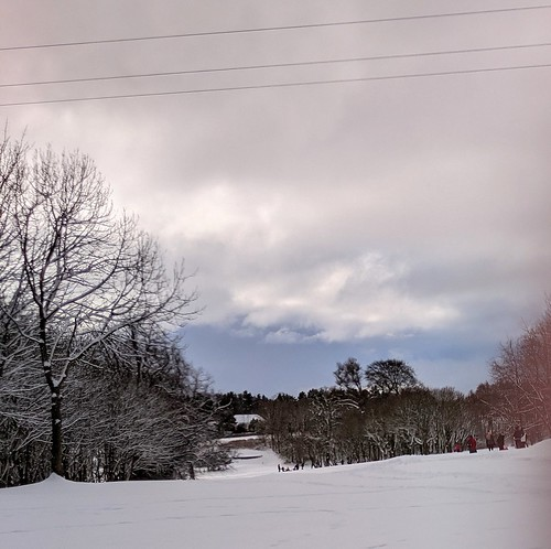 Balbirnie Snow , Fife