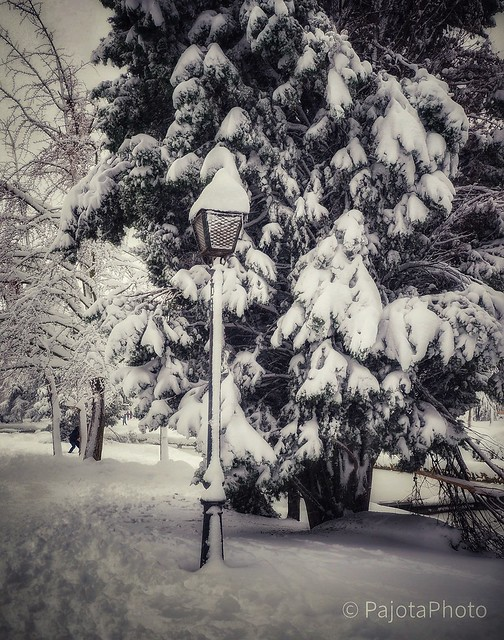Somewhere in Narnia