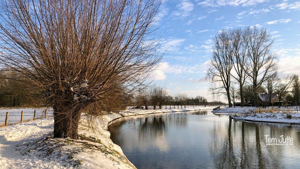 Winter in Odijk, Netherlands - 4107