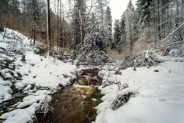 Schmelzwasser und Neuschnee