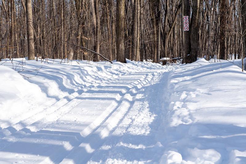 lun, 02/08/2021 - 10:40 - Parc Nature hiver 2021
