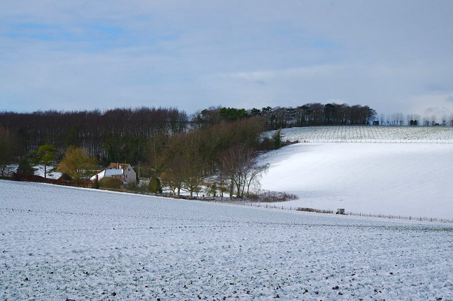 Our final view of the snowy Kent ocuntryside before heading home. Kite Hill.....
