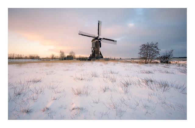 Wintermornings at Broekmolen
